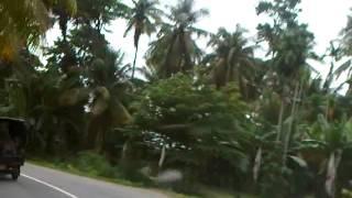 Taman Wisata Alam Camplong Mp3toke Kupang Ntt Kab