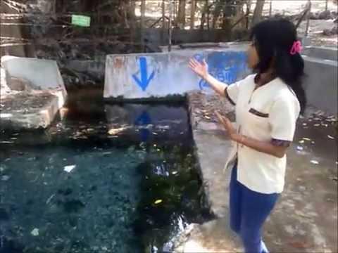Taman Wisata Alam Camplong Youtube Kab Kupang
