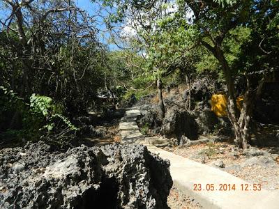 Tempat Wisata Kota Kupang Kabupaten Transportasi Binatang Hidup Dialam Goa