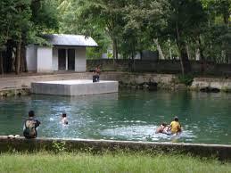 Tempat Wisata Ntt Kupang Camplong Taman Ditawarkan Tiga Jenis Macam