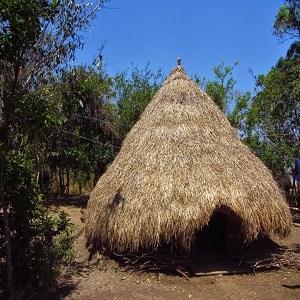 Ume Kebubu Wisata Alam Kupang Jpg Fit 300 Taman Camplong