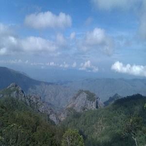 Wisata Alam Kupang Pemandangan Puncak Sabana Mutis Jpg Taman Camplong