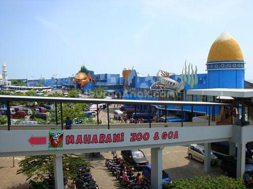 Berwisata Gua Maharani Menakjubkan Surabaya Adventure Kebun Binatang Goa Kab