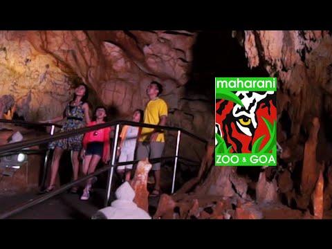 Official Maharani Zoo Goa Mzg Profil 2016 Youtube Kebun Binatang