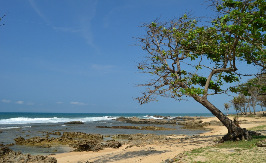 Pantai Karang Taraje Bayah Lebak Banten Proleevo Terletak Sekitar 4