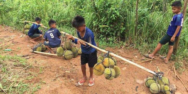 5 Tips Berkunjung Desa Adat Baduy Banten Kompas Anak Memikul