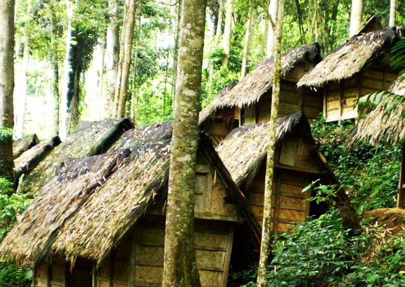 Halinshop Mengenal Kultur Suku Baduy Perkampungan Tradisional Kab Lebak
