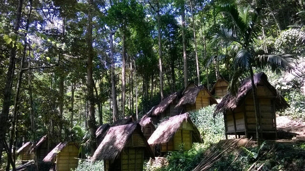 Kampung Suku Baduy Pengalaman Liburan Unik Banten Perkampungan Tradisional Kab