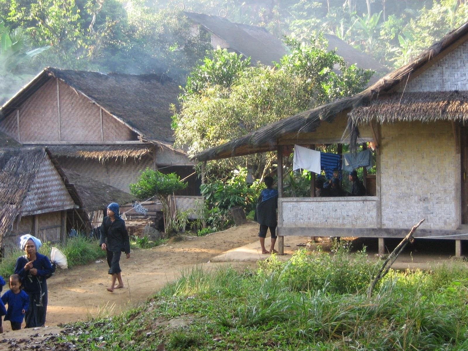 Mengenal Rumah Adat Suku Baduy Kang Muroi Perkampungan Tradisional Kab