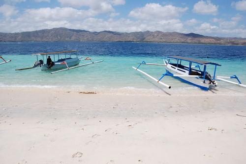 Gili Tangkong Sekotong West Lombok Sebie Beaq Giant Aquarium Fish