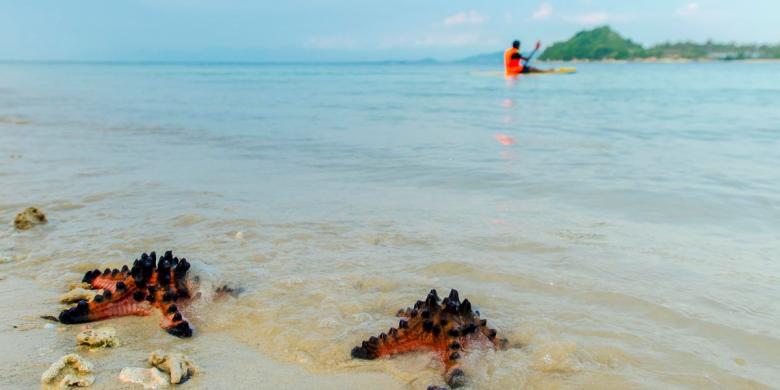 Tak Gili Trawangan 5 Anti Mainstream Lombok Tangkong Kab Barat
