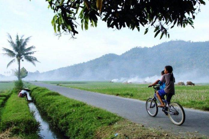 Asyik Gunung Sasak Lombok Jadi Destinasi Wisata Pasar Sesaot Kampung
