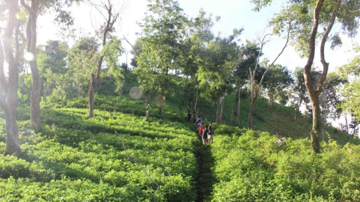 Gunung Sasak Bakal Dijadikan Destinasi Wisata Lombok Pasar Sesaot Kampung