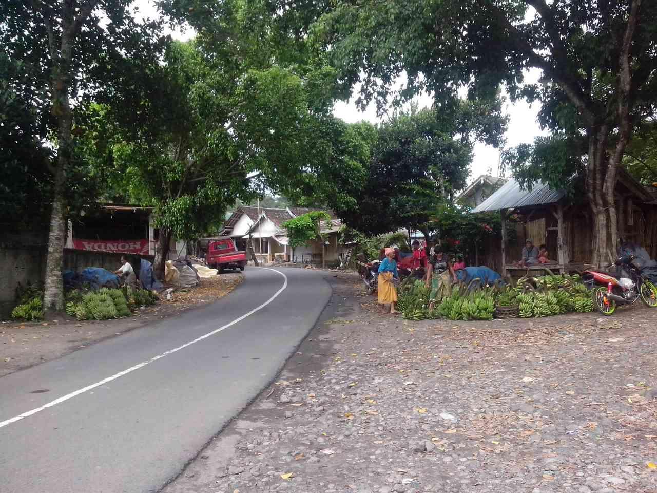 Hasil Pisang Sesaot Berlimpah Pasar Kampung Kreatif Sekawan Kab Lombok