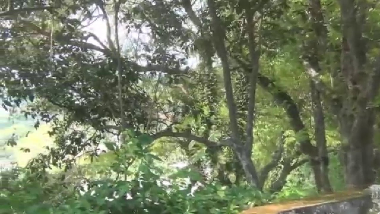 Lombok Pura Batu Bolong Temple Senggigi Youtube Kab Barat