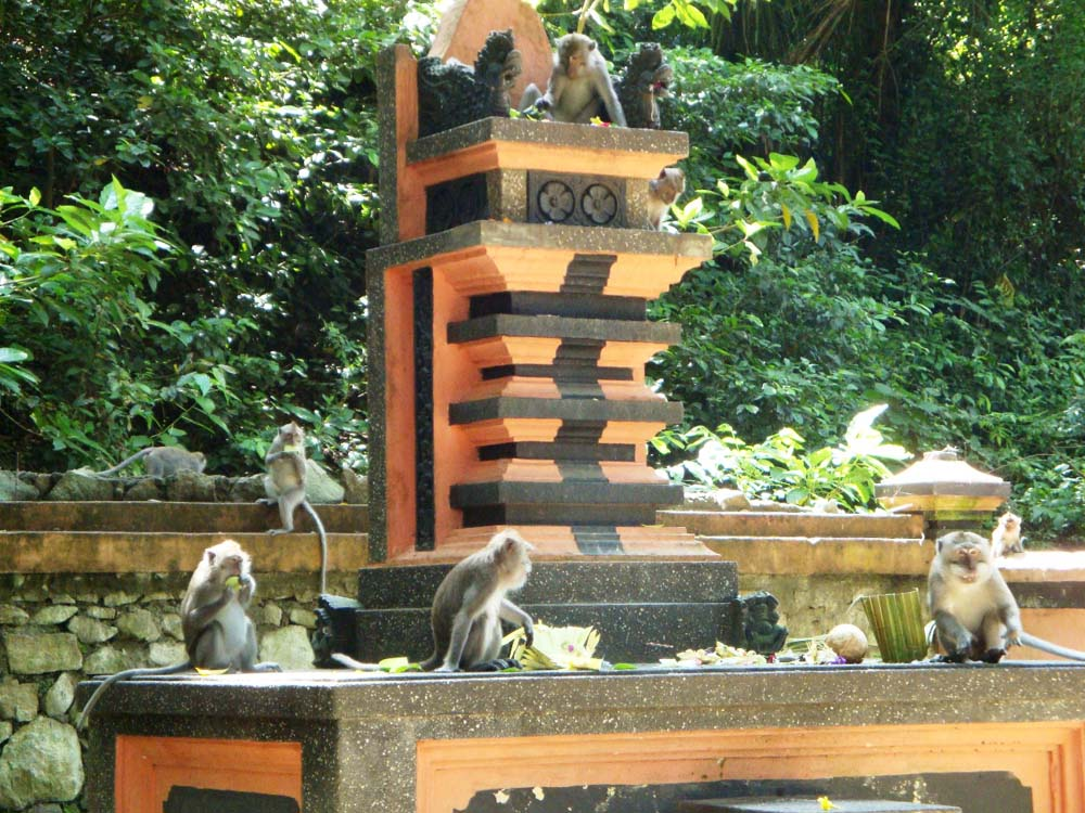 Wisata Lombok Sumbawa Gunung Pengsong Bukan Biasa 1 Jpg Pura