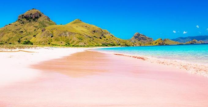 Daya Tarik Pantai Pink Lombok Menarik Wisata Kab Timur