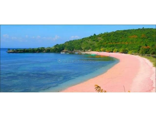 Desa Sekaroh Kec Jerowaru Kab Lombok Timur Ntb Nusa Tenggara