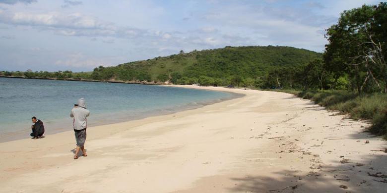 Investor Swedia Lirik Potensi Pantai Pink Lombok Kompas Timur Nusa