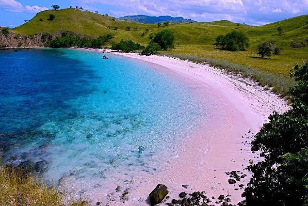 Keunikan Indonesia Pantai Pink Lombok Timur Click Enlarge Image Tempat