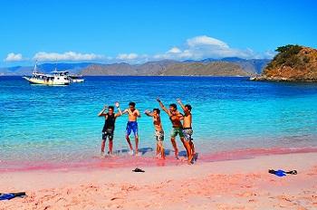 Keunikan Pink Beach Lombok Tangsi Wisatania Berenang Pantai Kab Timur
