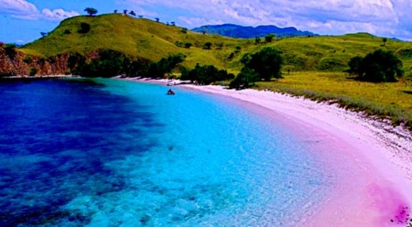 Liburan Pantai Pink Lombok Weishangmaoyi Kab Timur