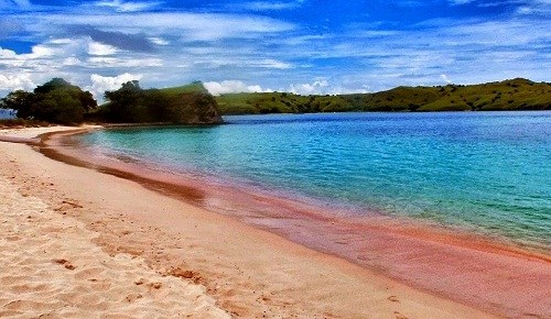Menikmati Keindahan Pantai Pink Lombok Kab Timur