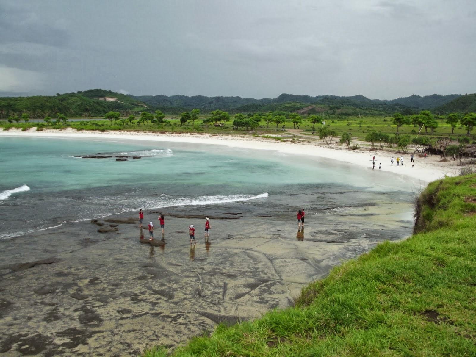 Pantai Pink Desa Sekaroh Jerowaru Lombok Timur Site Warna Pasirnya