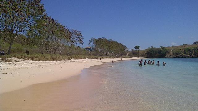 Pantai Pink Jejak Penjajah Ujung Selatan Lombok Lifestyle Liputan6 Sunariyah