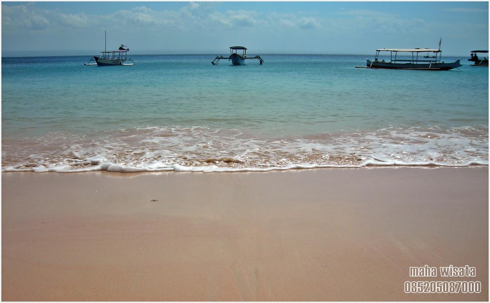 Pantai Pink Lombok Kab Timur