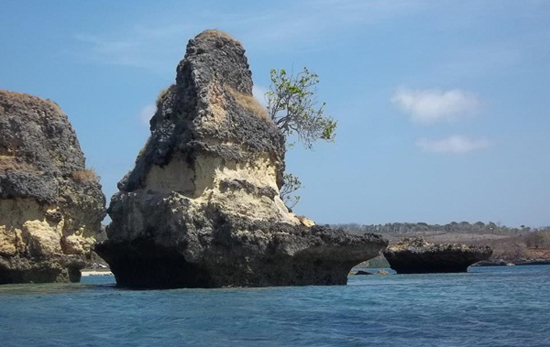 Pantai Pink Lombok Pesona Pasir Berwarna Putra Sebenarnya Bukan Temuan