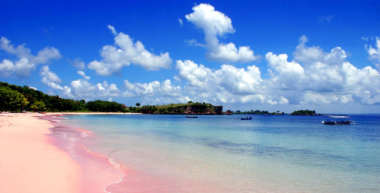 Pantai Pink Lombok Timur Gerbang Wisata Tour Adventure Kab
