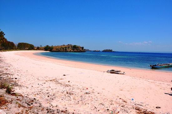 Pantai Pink Lombok Tour Paket Wisata 5 Jpg Kab Timur
