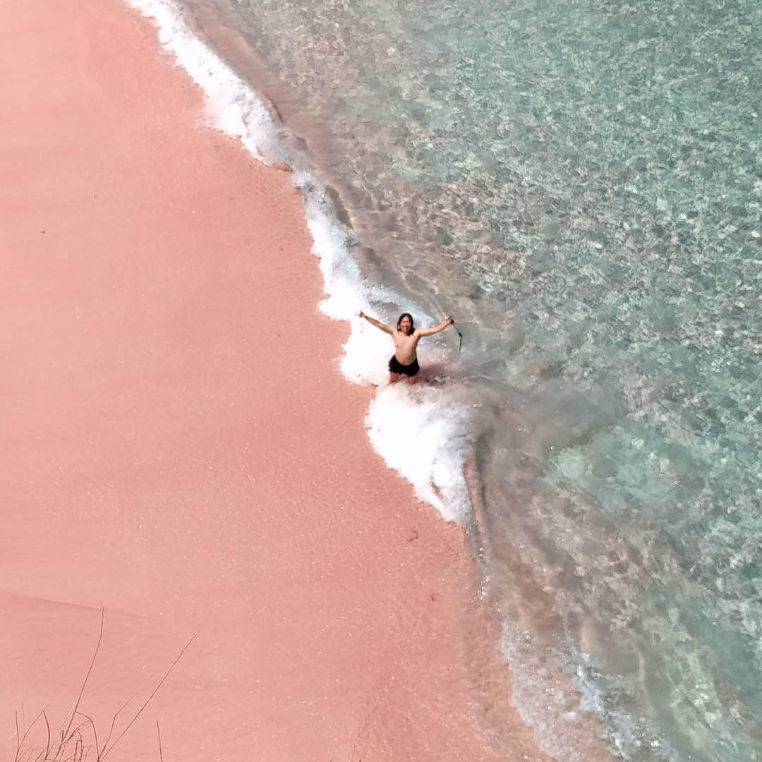Pantai Pink Salah Satu Unik Pulau Lombok Foto Timur Kab