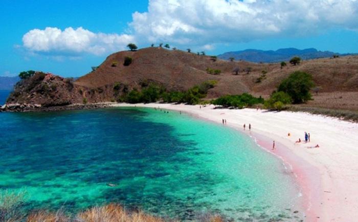 Pantai Tangsi Alias Pink Keindahan Unik Pulau Lombok Kab Timur
