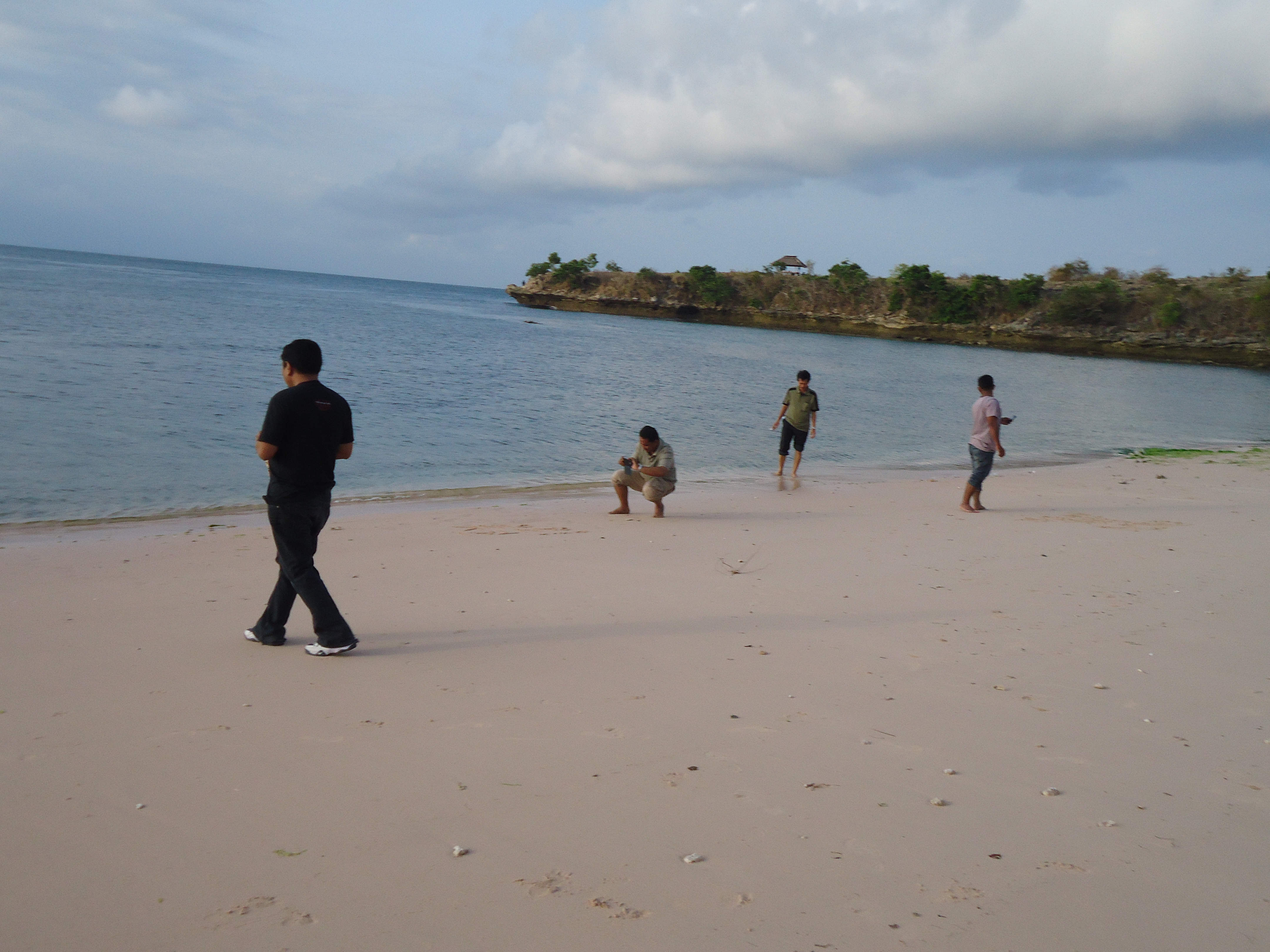 Pesona Pantai Pink Lombok Timur Marthentanone Keindahan Alami Berwarna Terekspose