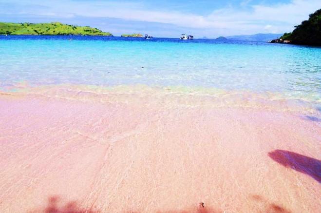 Pink Beach Eloratour Pantai Lombok Timur Nusa Tenggara Barat Kab