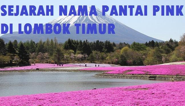 Sejarah Nama Pantai Pink Lombok Timur Info Berita Ntb Kab