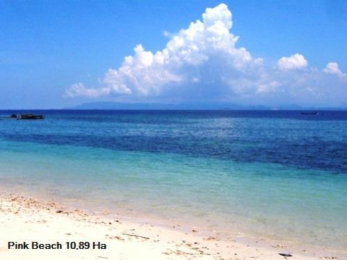 Tanah Dijual 10 89 Hektar Pantai Pink Telone Lombok Timur