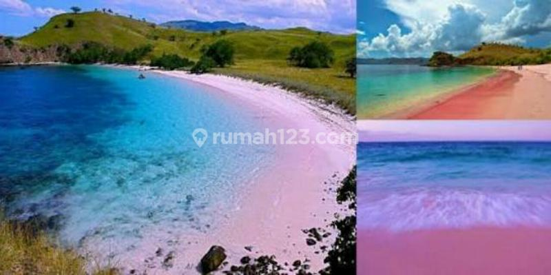 Tanah Dijual Las1736109 Rumah123 Los Pantai Pink Beach Nego Jerowaru