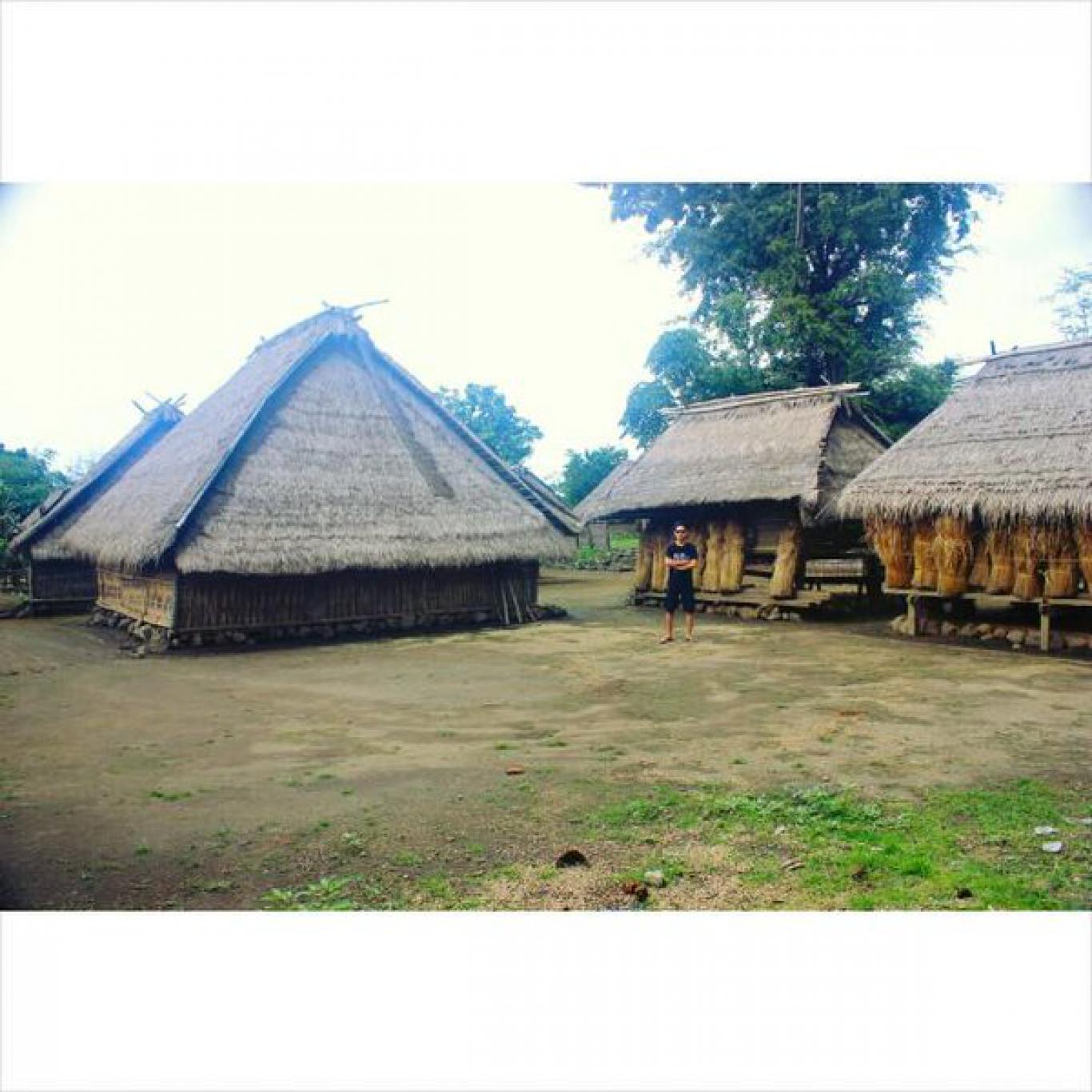 Profil Desa Website Gumantar Rumah Adat Kab Lombok Utara
