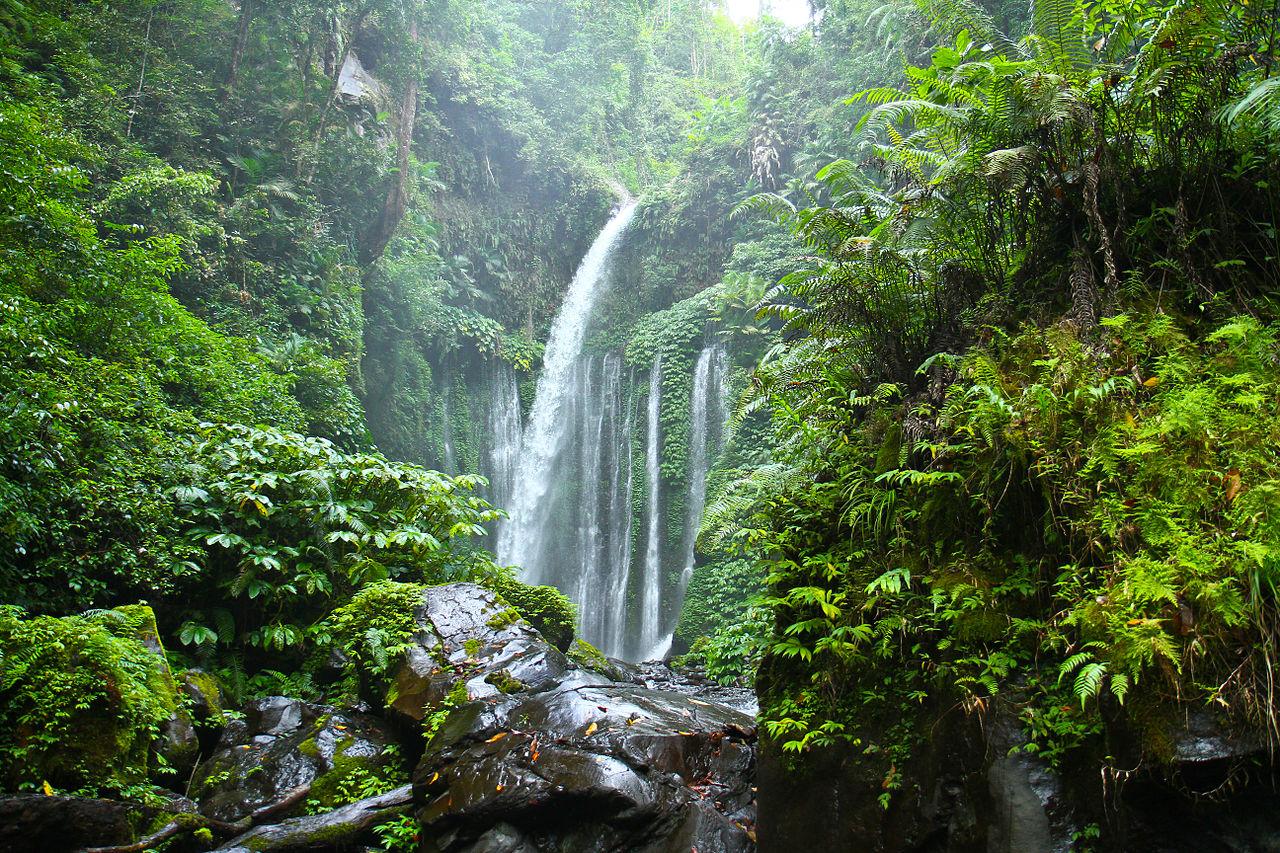 218 Panorama Alam Curug Tiu Kelep Lombok Utara Wisata Mencapai