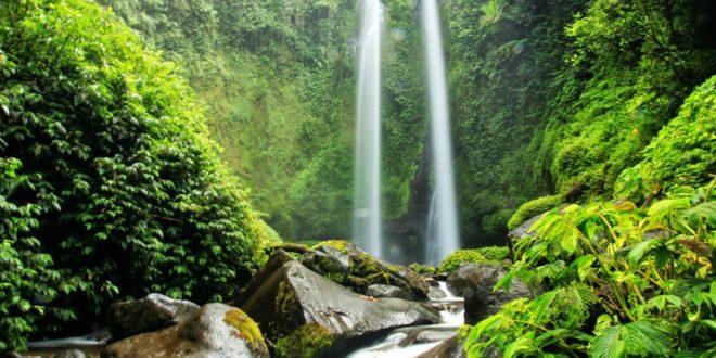 Air Terjun Kaki Gunung Rinjani Ali Mustika Sari Sendang Gile