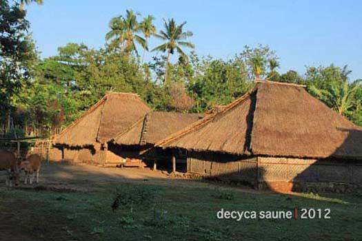 Desa Adat Senaru Kaki Rinjani Lombok Utara Wisata Kab