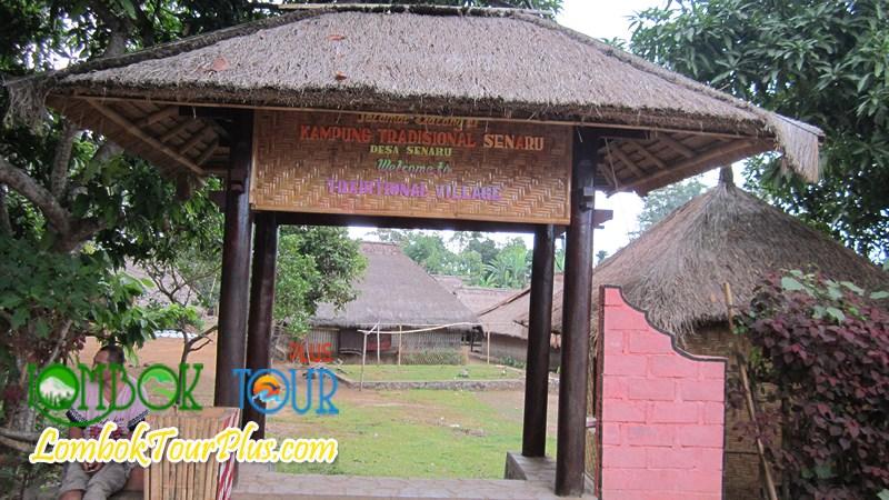 Objek Wisata Desa Senaru Tour Pulau Lombok Terletak Lereng Gunung