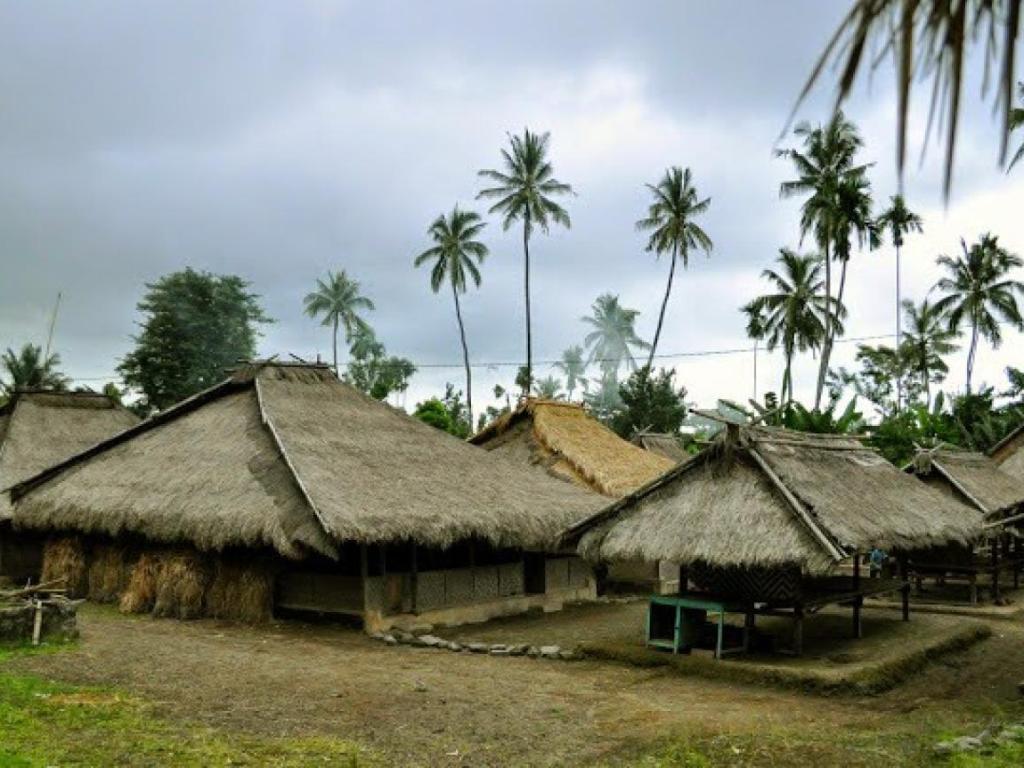 Senaru Tour 2h1m Arix Lombok Desa Wisata Kab Utara