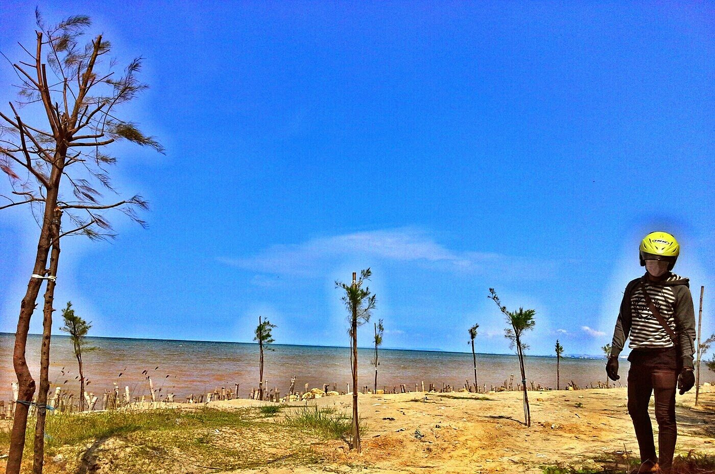 Keindahan Wisata Alam Mangrove Center Tuban Tempat Memiliki Memukau Terletak