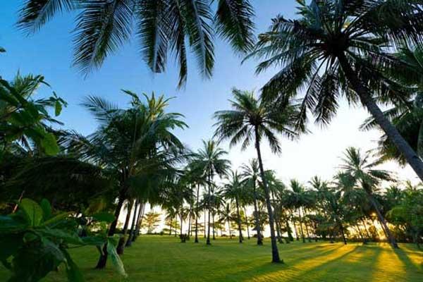 Rekreasi Bersama Keluarga Pantai Sire Info Lengkap Tempat Lombok Medana