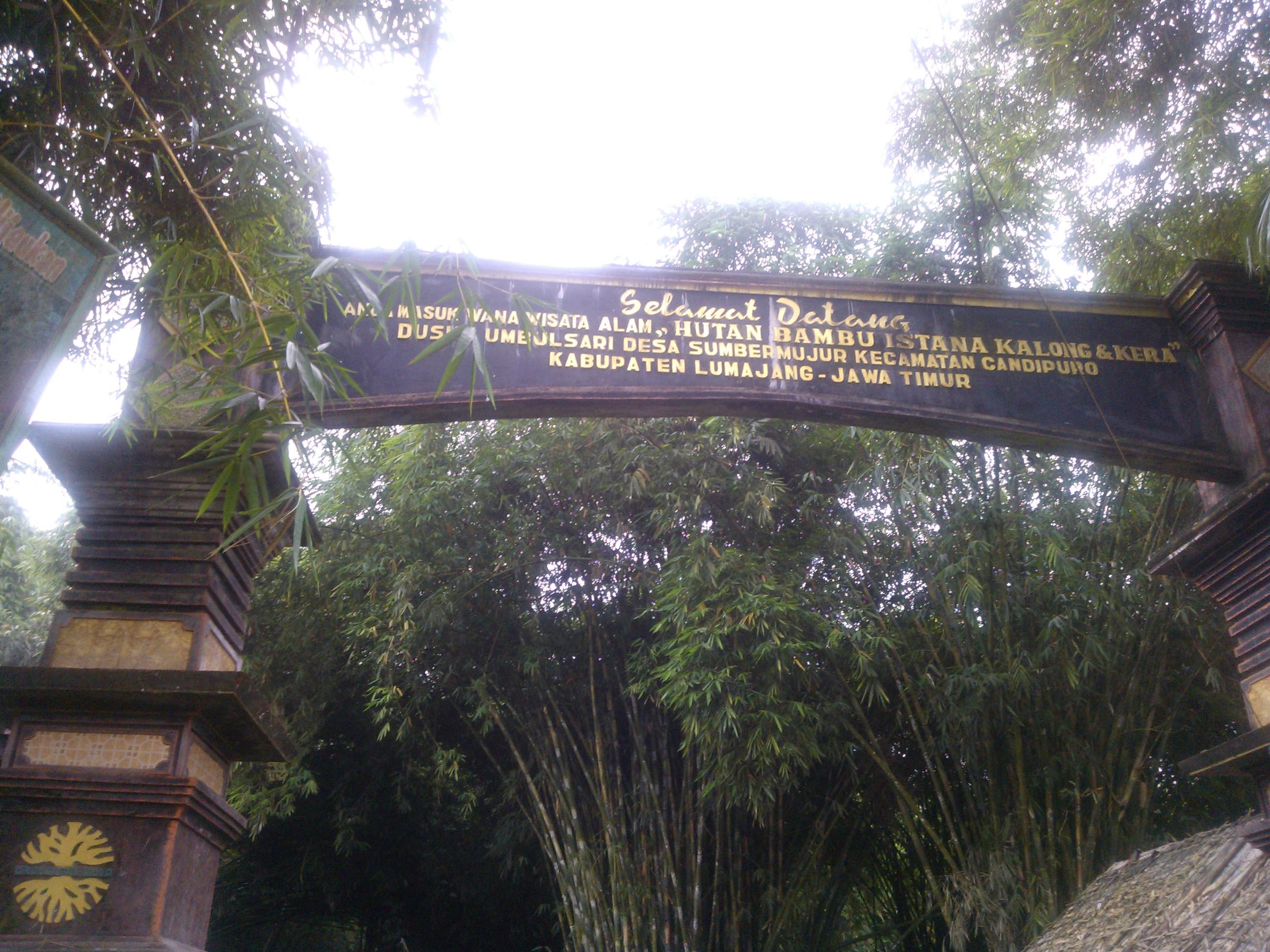 Tempat Wisata Hutan Bambu Bekasi Timur