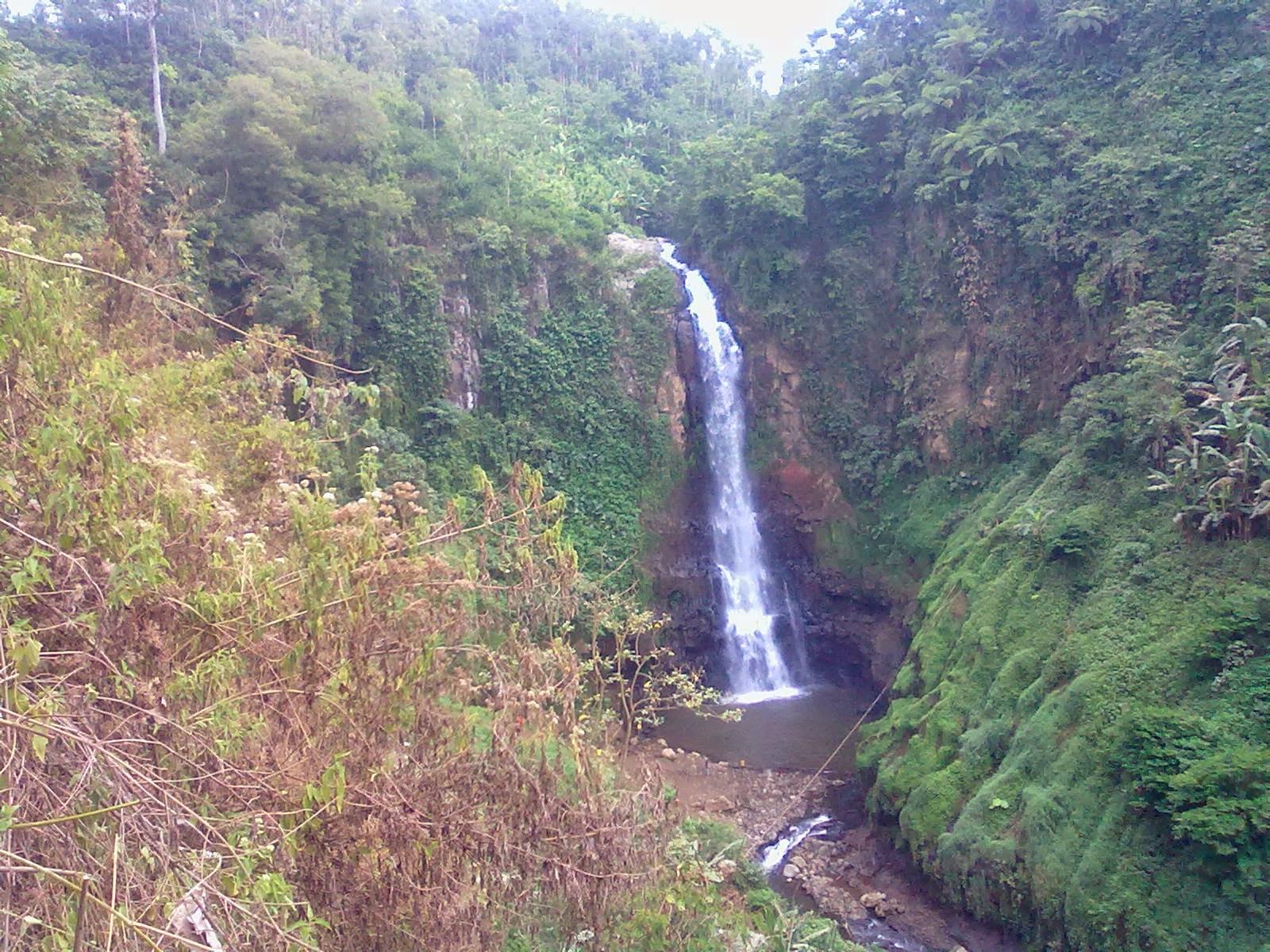 25 Tempat Wisata Terbaik Lumajang Wajib Dikunjungi Cepat Share 16